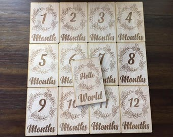 Ring of Roses Baby Monthly Milestone plaques