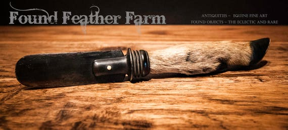 A Fabulous Antique Deer Foot Bakelite Letter Opener from the Early 1900's