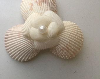 Beach Wedding Sea Shell Boutonniere Corsage seashell Pin