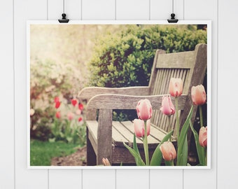 Tulip and bench photo, pink tulip art print, country home decor, flower photography, nature print, pink nursery decor, pink bathroom decor