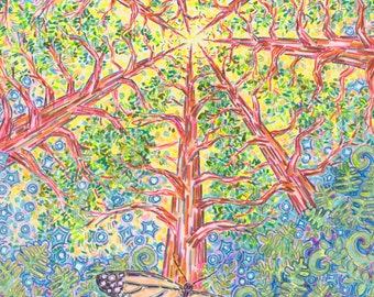 Art Print, Giclee, Redwood, Tree, Divine, Butterfly, Nature, Spiritual, Mystical, Light, Journey, Life, Sequoia, Monarch, Earth, Sacred