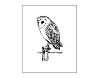 Printable art, Wall decor, Bird art, Owl art, Nursery art print, Owl baby room decor, owl wall art, custom digital, DIY