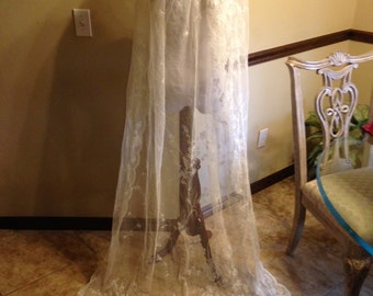 Glorious Antique Edwardian French Lace Veil