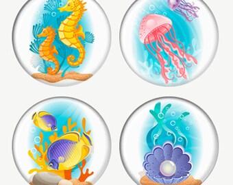 Mignon mer créatures des aimants ou des macarons ou Flatback médaillons hippocampes méduse poisson Perle en coquillage