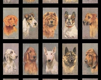 Domino Dogs No. 1 - 1x2 - Digital Collage Sheet - Instant Download