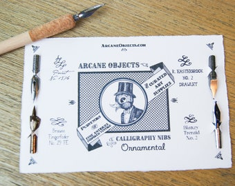 Ornamental Calligraphy Nibs Pack - Vintage Pen Nibs Set