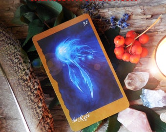 Faeries Oracle 3 Card Reading/Tarot Card Reading/Tarot Fairy Cards/Brian Froud Fairy Oracle Cards/Psychic Reading/Pagan Wiccan Tarot Reading