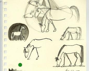 Horse Sketch Sheet