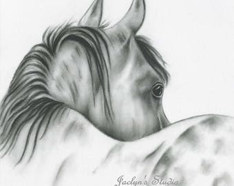 """Charcoal Horse Drawing Print, 8""""x10"""" White Horse Art, Silver Dapple, Horse Sketch, Equine, Horse Drawing, Charcoal Horse, Wild Horse Art"""