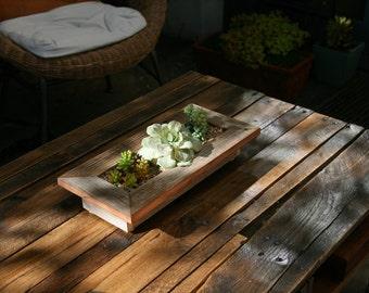 Artichoke Succulent Planter
