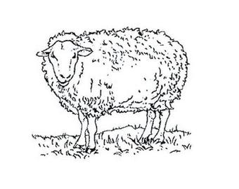 Sold unmounted TC175 sheep stamp