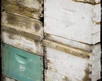 Vintage ruche boîtes photographie - boîtes de gardien abeille - Miel abeille boîtes, aqua blanc bruns apiculteurs, abeilles