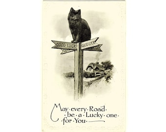 Vintage 'Lucky Black Cat' Wildt and Kray Postcard Cute Kitty Cat Kitten Floral Embossed Greeting Card Crossroads English Country Village