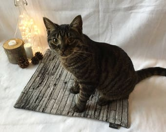 Kitty Cat Mat - Planks
