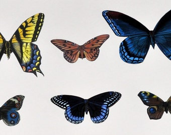 Butterfly Magnets Wholesale Lot of 6 Refrigerator Magnets