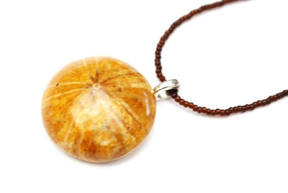 fossil sand dollar necklace -  echinoderm pendant - Brown domed round Shell  handmade bead necklace