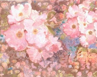 Wild Irish Roses Watercolor color Photography print