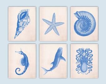 Requin-baleine, Star, Octopus, cheval de mer, mer créatures estampes, art nautique, océan nautique tirages, la vie côtière, Set 6 bleu imprimé SKSC6