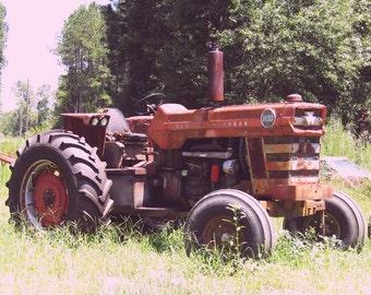 Massey Ferguson Tractor.Digital Download.Tractor Photography.Printable.Rustic.Farm Photography.Vintage Tractor.Red Tractor.Rusty Tractor