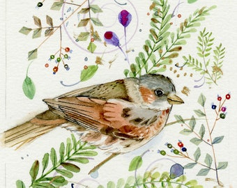 fox sparrow original watercolor painting part of sparrow collection