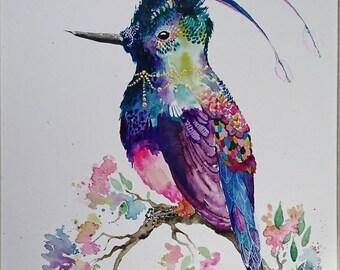Colourful bird painting - Florence the hummingbird A4 print