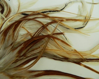 LIGHT GINGER WIDE Tapered Feather Hair Extensions, Natural Rooster Feather Variant, Long Hair Feathers, Select Your Size
