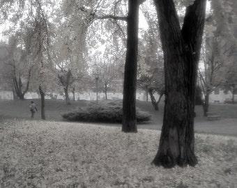discreet entrance of autumn inmilan