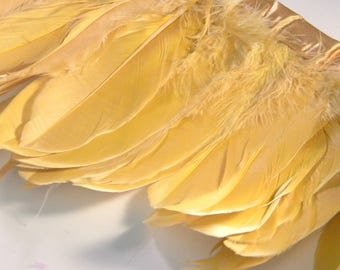 10 natural champagne goose feather - 10 cm to 18 cm - mounted on bias PLU 44
