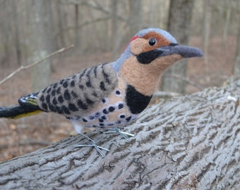 Mr. Northern Flicker, needle felted bird fiber art sculpture