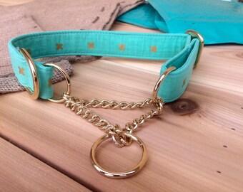 Teal Dog Collar, Teal Blue and Metallic Gold, Boy Collar, Girl Collar, Half Check Chain, Martingale, Gold Metal Buckle