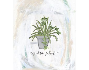 Spider Plant Handpainted and Handlettered Illustration Print