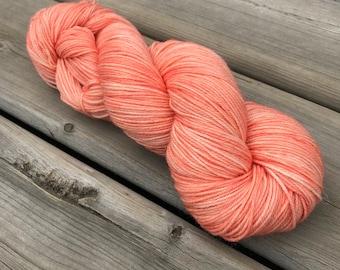 Wild One #1 - Squishy Sock - Superwash Merino & Nylon