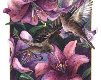 Fine Art Print of Original Watercolor Painting - Lilium