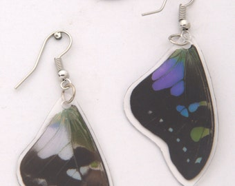Purple Spotted Swallowtail Earrings