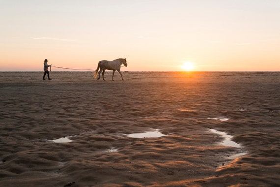 HORSE WALKING. Tarifa Print, Horse Photography, Animal Picture, Photographic Print, Travel Photography