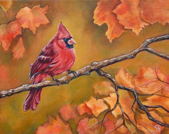 Cardinal in Fall Fine Art Print