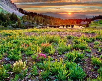 Nature Photography - Rocky Mountains, Colorado, Gold King Basin, Telluride, San Juan Mountains, Alta Lakes, Fine Art