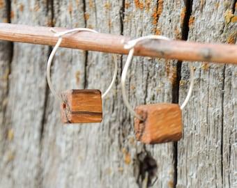 Zebrawood Cube Earrings