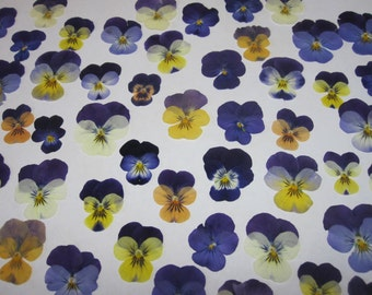 Dried Pressed Flowers for Crafting - Natural violas pansies johnny jump-ups mix
