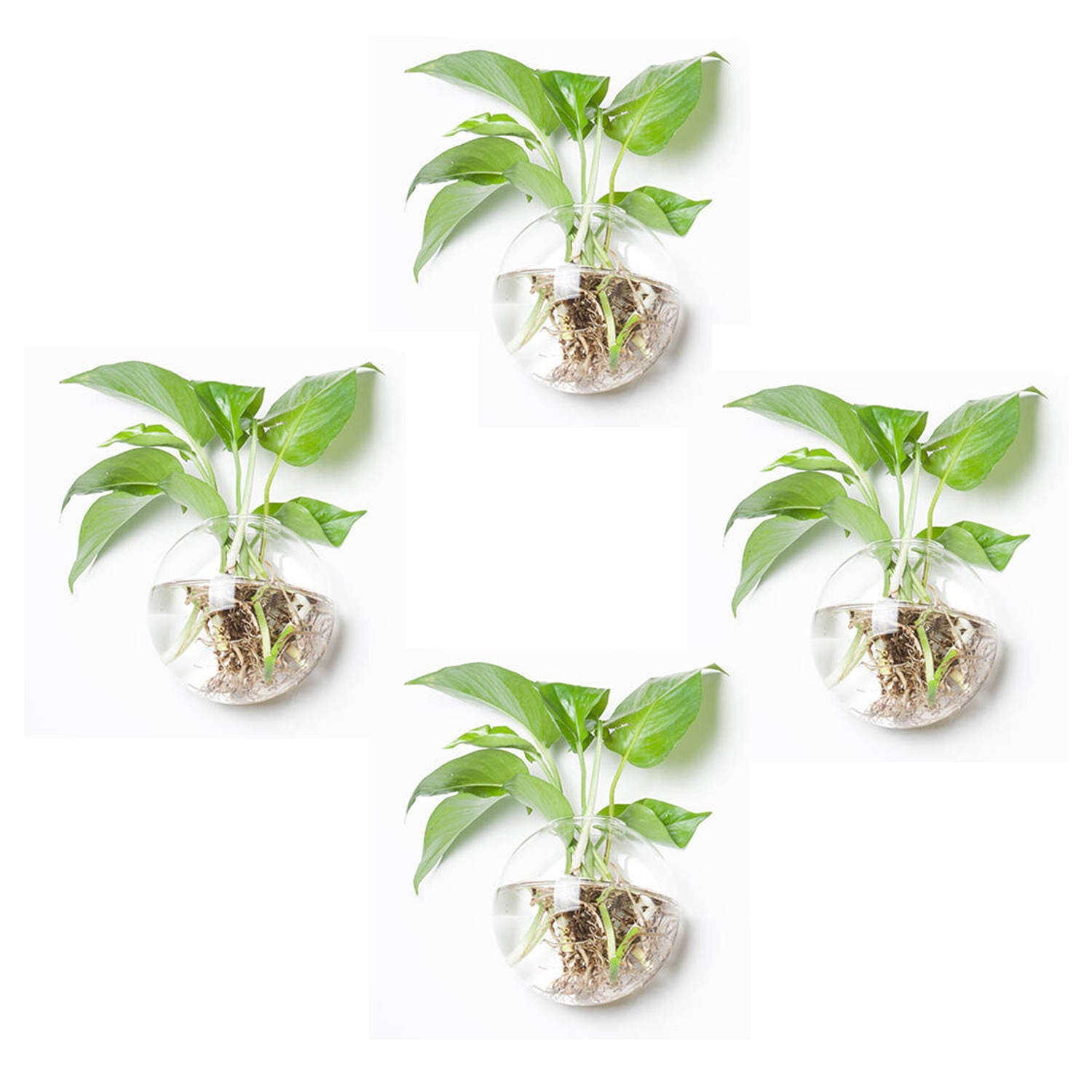 SALE Set of 4 wall bubble terrariums wall hanging planter indoor wall mounted vase for living home decor DIY plants garden supply