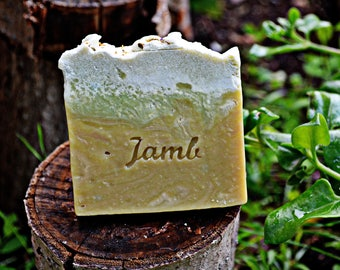 Tea Tree Soap - antiseptic and bactericidal soap, artisan soap, natural soap, acne soap, intimate soap, combat infections.