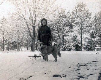 vintage photo 1910 Young Girl Audra & Her Lab Dog Sled in Snow