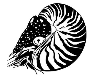 Nautilus vinyl diecut decal cephalopod car truck window laptop sticker
