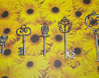 set of 5 key charms silver 2.8 to 6.8 cm # 1