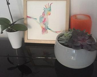 Colorful Parrot - original watercolor