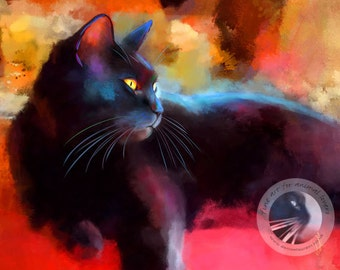 Day Dreamer Black Cat Print - Limited Edition Black Cat Art - Colourful Kitty Print  - Free Shipping