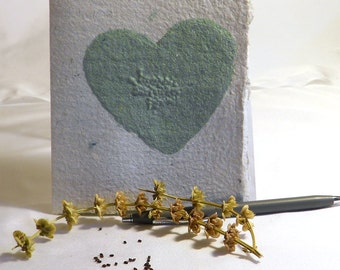 Hand Made Recycled School Paper Floral and Herb Seed Cards set of 4