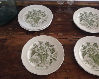 Dessert/cheese vegetable decor Gien plates / French dishes