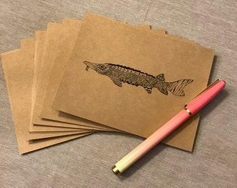 Sturgeon Notecards (10 pack)
