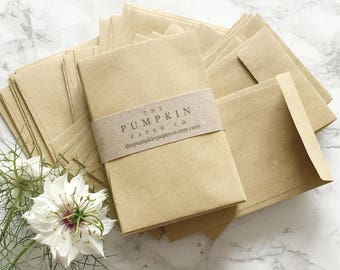 """100 Seed Packet Envelopes Kraft Wedding Favor Envelopes Small Manilla Envelopes Seed Packets Coin Envelopes 3.7/8x2.5/8"""" 98x67mm approx"""